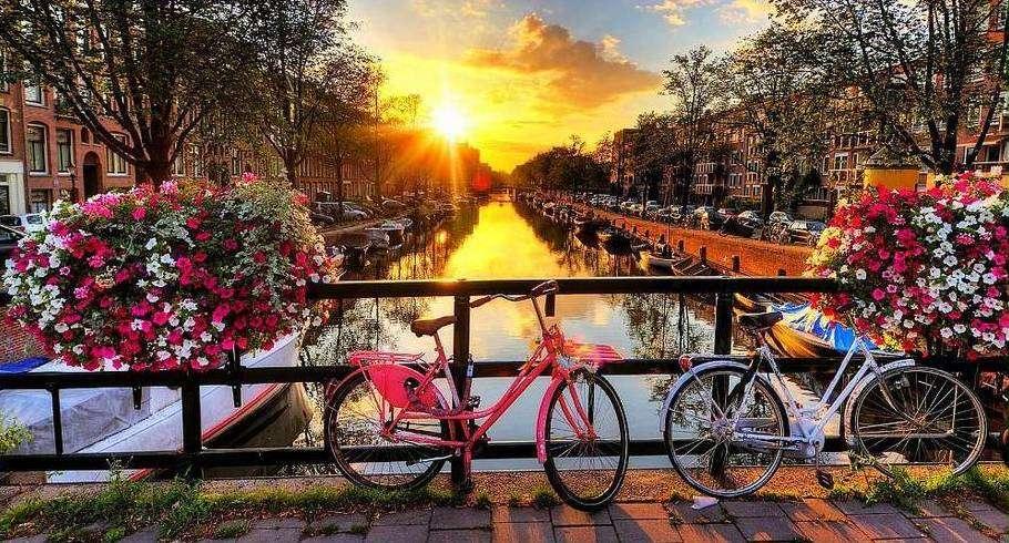 amsterdam-riot-910-490