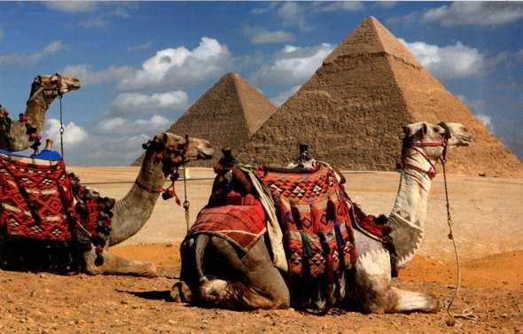 туры в египет через белоруссию